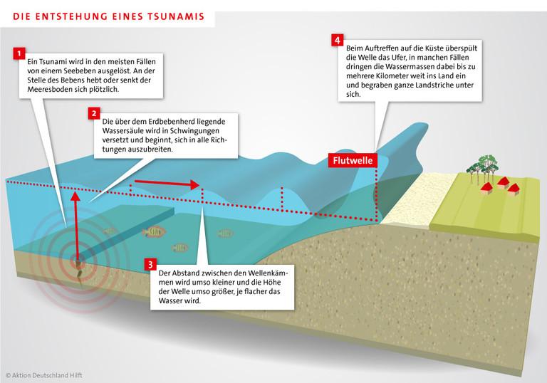Infografik Entstehung eines Tsunamis